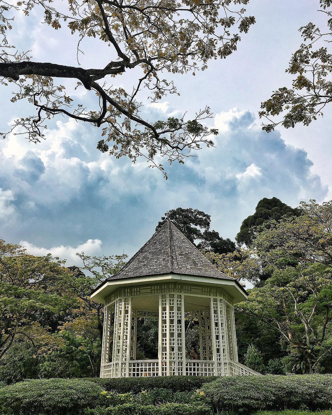 singapore_botanic_gardens_brocnbells